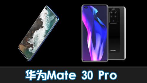 华为Mate 30屏下摄像头 90Hz刷新率 5倍光学变焦