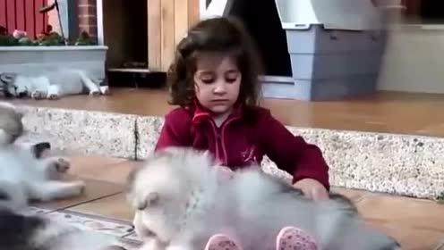 大狗狗和小宝宝玩耍 狗狗居然学宝宝说话 逗宝宝开心!