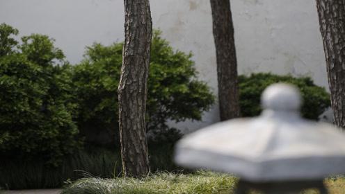 古琴曲欣赏《神人畅》弹奏:王先宏图片
