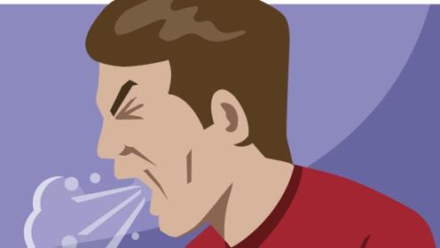 患上支气管炎,有哪些食疗方法可以缓解?