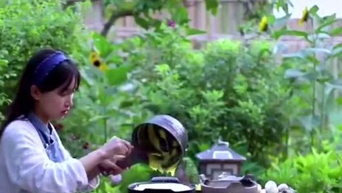 中国最美女网红李子柒,为传承传统工业放弃两百万!