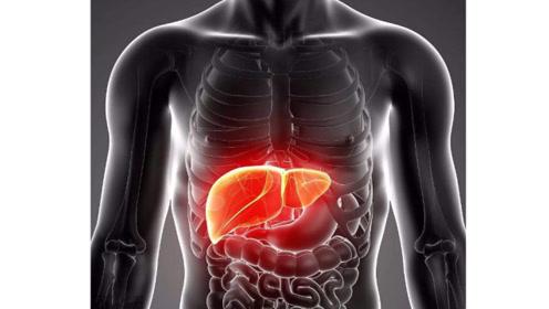 肝脏不好的人有哪些症状?你是不是该养护肝脏了!