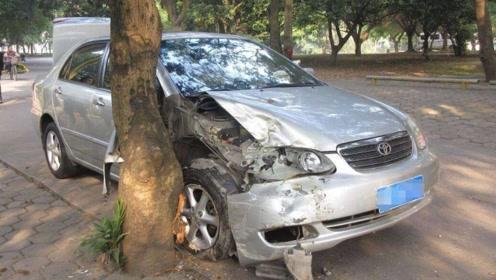 刹车突然失灵,选择撞树还是撞墙?老车主说了实话