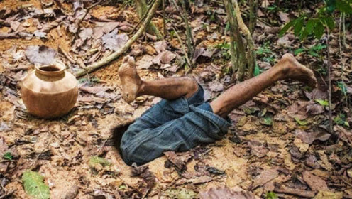 隐居男子在丛林地下建房,钻进去一看,网友直呼太羡慕他