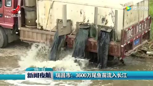 瑞昌市:3600万尾鱼苗流入长江