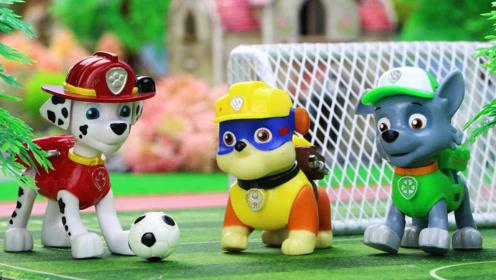 汪汪队狗狗们和幼儿园的小朋友们一起进行足球比赛