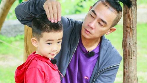 """6岁Jasper与海豚""""共舞""""超级可爱,应采儿为儿子放弃事业"""