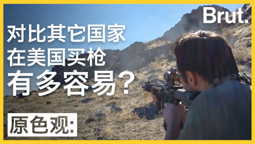 美国一天87起枪击案:对比他国,买枪到底多简单?