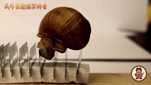 柔软的蜗牛从一排刀片上爬过去会怎样?老外的这个实验看着真揪心