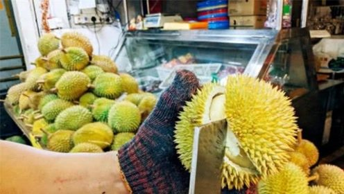 国人喜欢吃的爆口榴莲,为什么泰国人一律不吃?