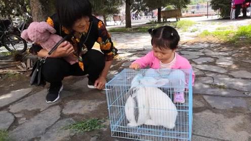 姥姥带外甥女逛街,发现可爱的动物后,蹲下来直接不走了!