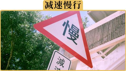 """备胎说车:为什么说""""慢点开""""正在毁灭中国交通"""