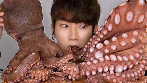 """帅气小哥吃""""巨型章鱼"""",吃到停不下来,看的都食欲大增"""