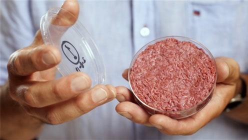 中国首款人造肉即将上市,就在9月!专家:与美国的还有差距