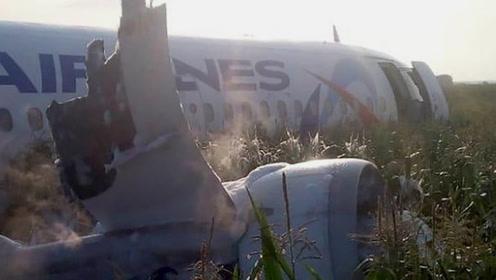小鸟卷入发动机? 俄客机玉米地上硬着陆 机上234人无大碍