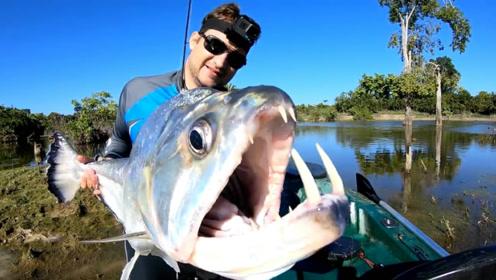意外钓获一条罕见的大鱼,抱起一看吓一跳,从没见过这种鱼