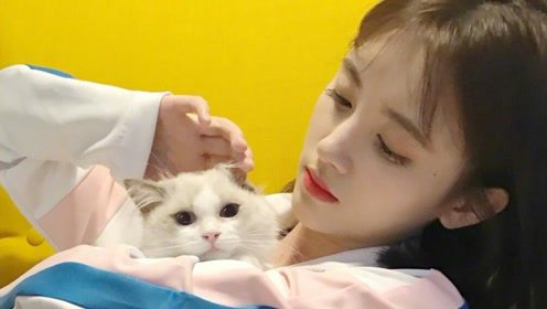 鞠婧祎最美的角色,不是白素贞不是韩芸汐,而是心狠手辣的她