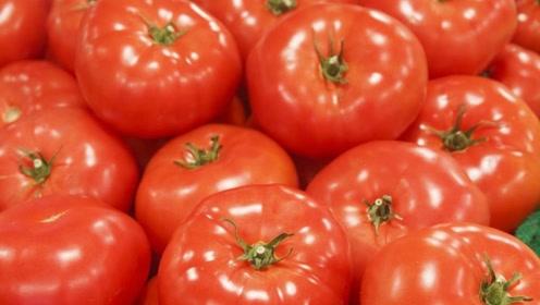 早上坚持吃一个西红柿,身体会有2大好处不请自来,别错过