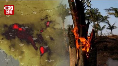 亚马逊雨林大火连烧3周没人管?巴西总统:是NGO故意纵火