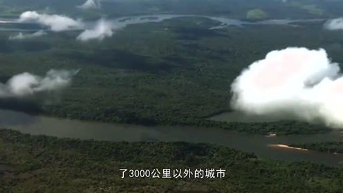 亚马逊雨林持续三周大火似人间炼狱 我们居然一无所知!