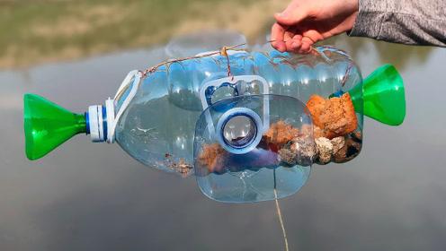 老外竟用塑料瓶做捕鱼器,效果不要太好!网友:周末就去试试!