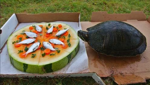 """国外朋友外卖点了个西瓜披萨,引来多个""""馋龟"""",一口一口吃到撑"""