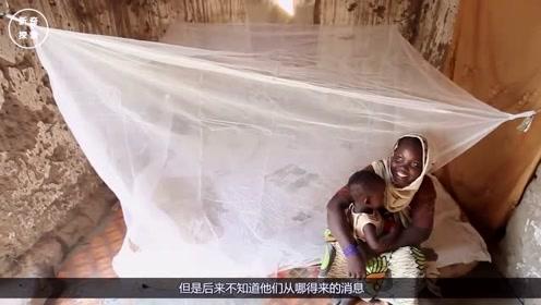 非洲人引进中国蚊帐,害了自己不说,还造成了非常严重的后果!