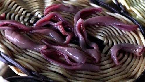 韩国海边的各种刺身美食,都是鲜活海鲜自取,老板切好就可以吃了