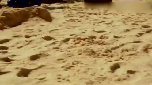 海绵宝宝-海绵出水奇遇,大家来到人类沙滩,被男孩一脚踢飞