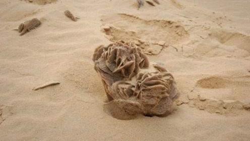 """沙漠特产""""玫瑰石"""",在沙漠中捡到一块就发大财"""