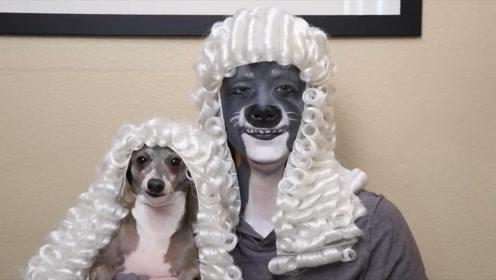 美女为了治疗爱犬抑郁症,竟然把自己也变成狗,天天陪着它