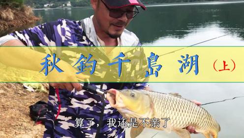 实战:乐钓山水千岛湖,这大鲤鱼真是漂亮!(上)