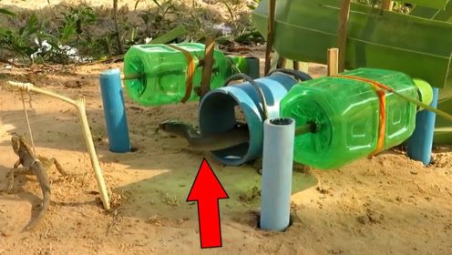 印度奇人用塑料瓶做捕蛇机,蛇刚靠近就被捕获,看得太过瘾!