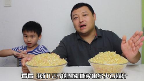 儿子爱喝石榴汁,老爸怒买12斤石榴,能榨出多少杯呢?