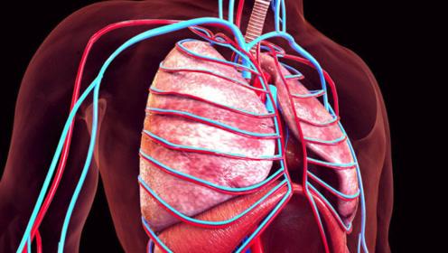 """医生忠告:""""肺""""开始癌变,手指会有2个异常,若出现1个别忽视"""
