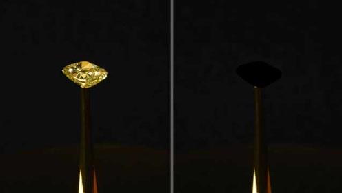 科学家发现世界最黑物质,吸光率达到99.995%