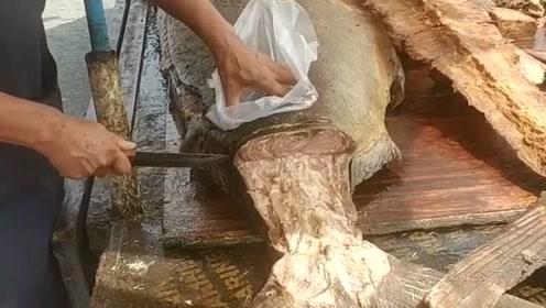 """像刚""""出土""""的美食,这条鱼感觉有点年头了,味道很过瘾"""