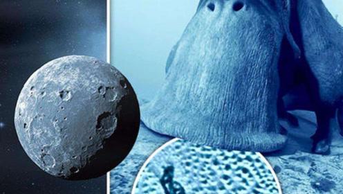 """太阳系边缘出现巨型""""蜗牛"""",宇宙或存在比人类大亿倍的生物"""