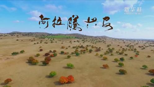 内蒙古兴安盟秋景美如画