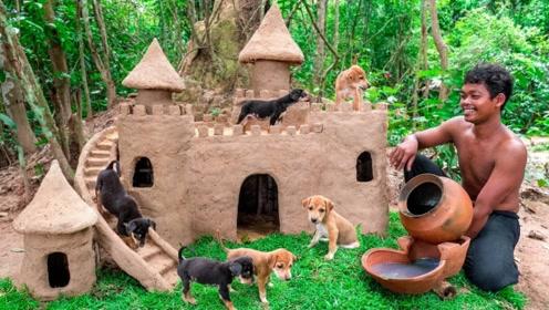 如何用泥土制作狗狗迷你城堡?老外亲自教学,网友:我也试试