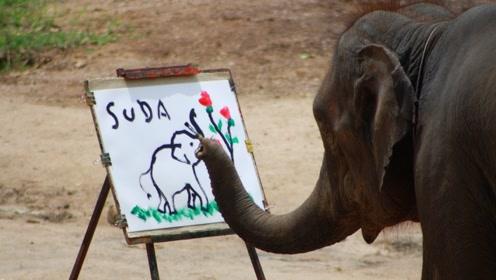 """动物界中的""""毕加索"""",大象给自己画画,一幅画卖500块!"""