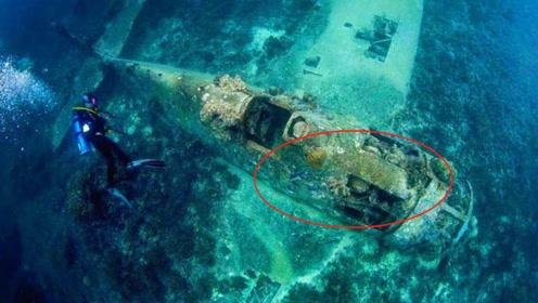 中国东海发现沉船,上面满是圆明园文物,英媒:那是英国的?