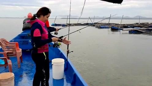 只要是鱼多,大姐抛竿都不会,一样能钓到鱼