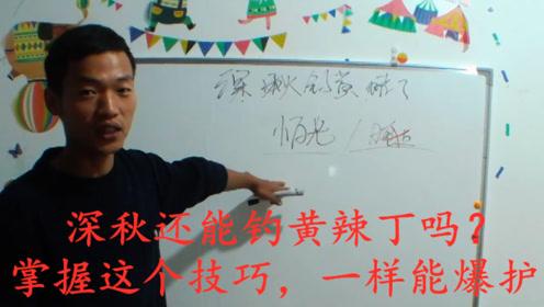 野钓:深秋钓黄辣丁,一定要慎重选择,只有这样才能收获最佳