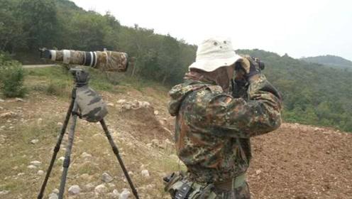 """摄影师30年拍出一个""""鸟类王国"""":反对引诱拍摄,会伤害它们"""