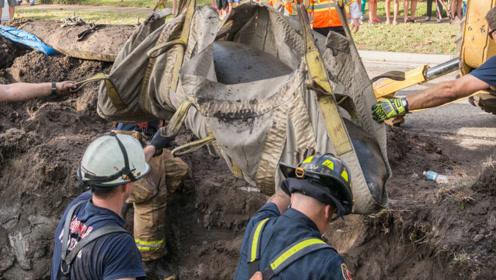排水道经常传出叫声,请来挖掘机一挖,救出一只珍稀动物!
