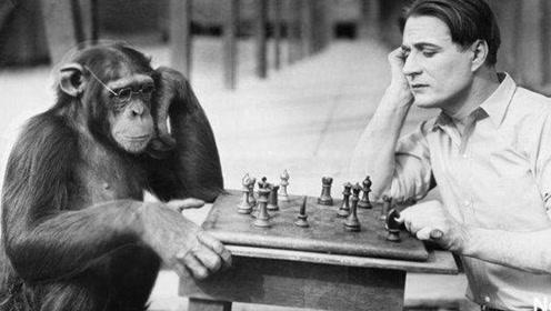 人类祖先真的是类人猿吗?科学研究发现,这么多年我们都错了!