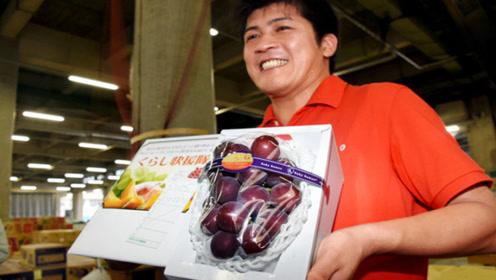 世界上最贵的葡萄,一串卖出8万天价,网友:贫穷限制了我的想象