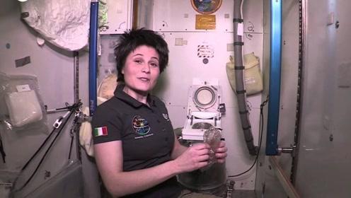 宇航员在太空是怎样生活的?老外亲身试演:太不容易了!