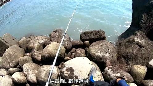 海钓,一直在上鱼,小鱼玩的过瘾